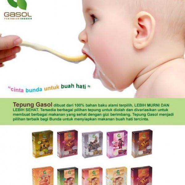 Makanan Untuk Bayi Gasol Organik